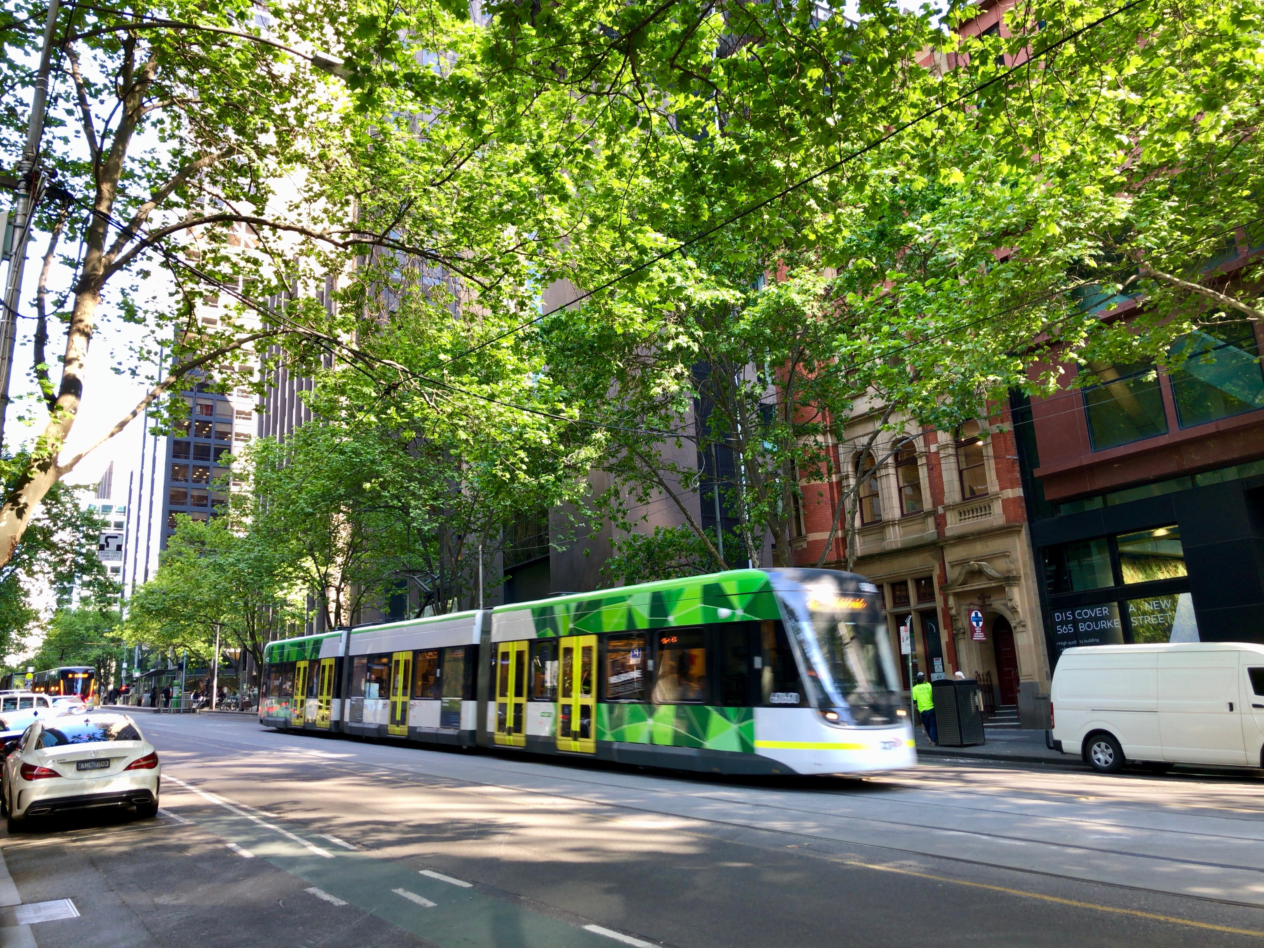 メルボルン,中心,オーストラリア,一人旅,女性