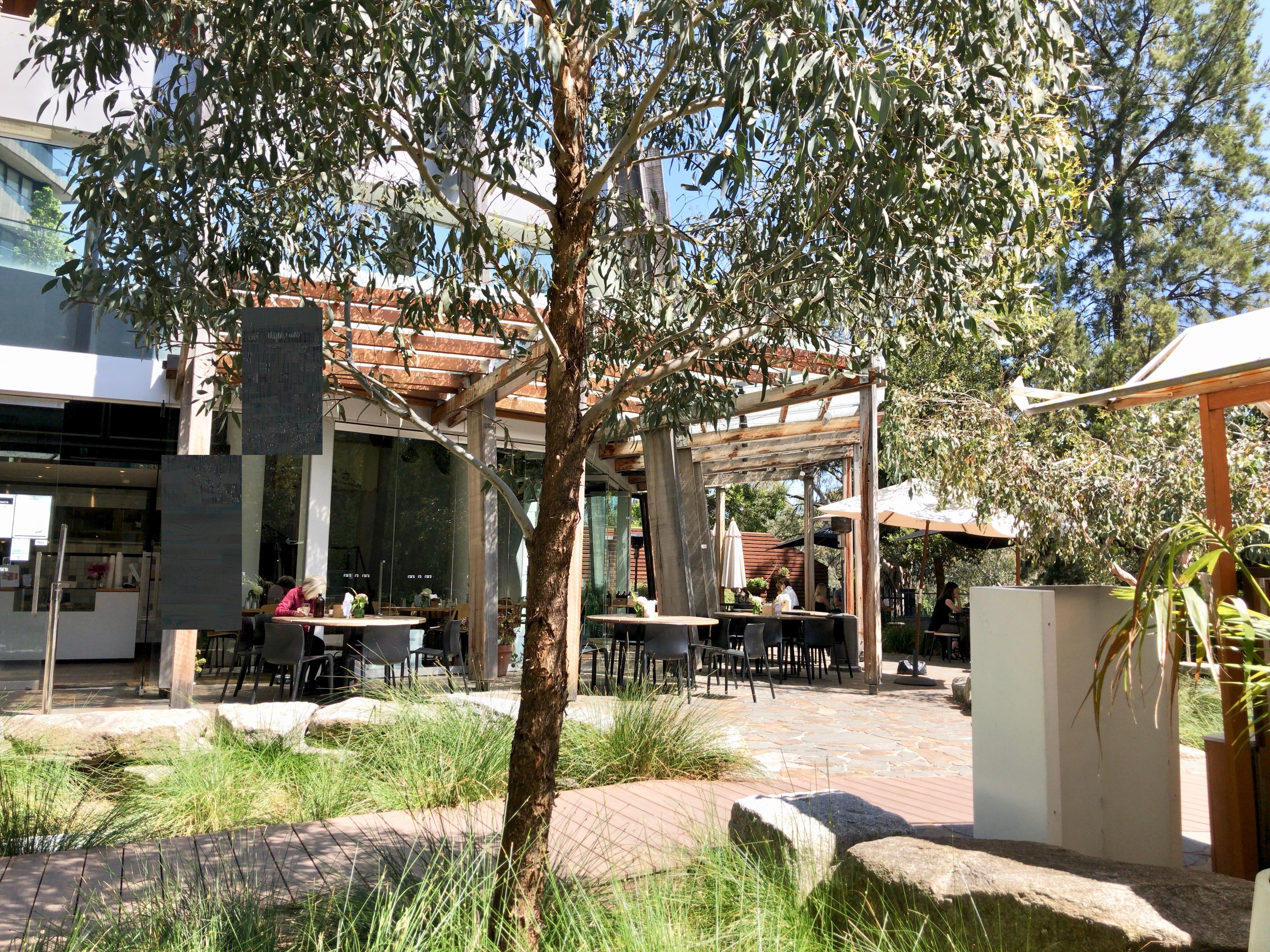 メルボルン,中心,オーストラリア,一人旅,女性,カフェ,おしゃれ,キティバーンズ