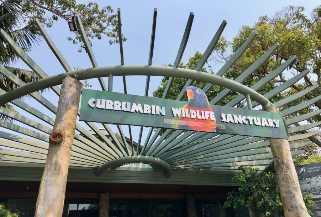 オーストラリア,カランビン,カランビンワイルドライフサンクチュアリ,動物園,ゴールドコースト,コアラ,抱っこ,写真,サーファーズパラダイス