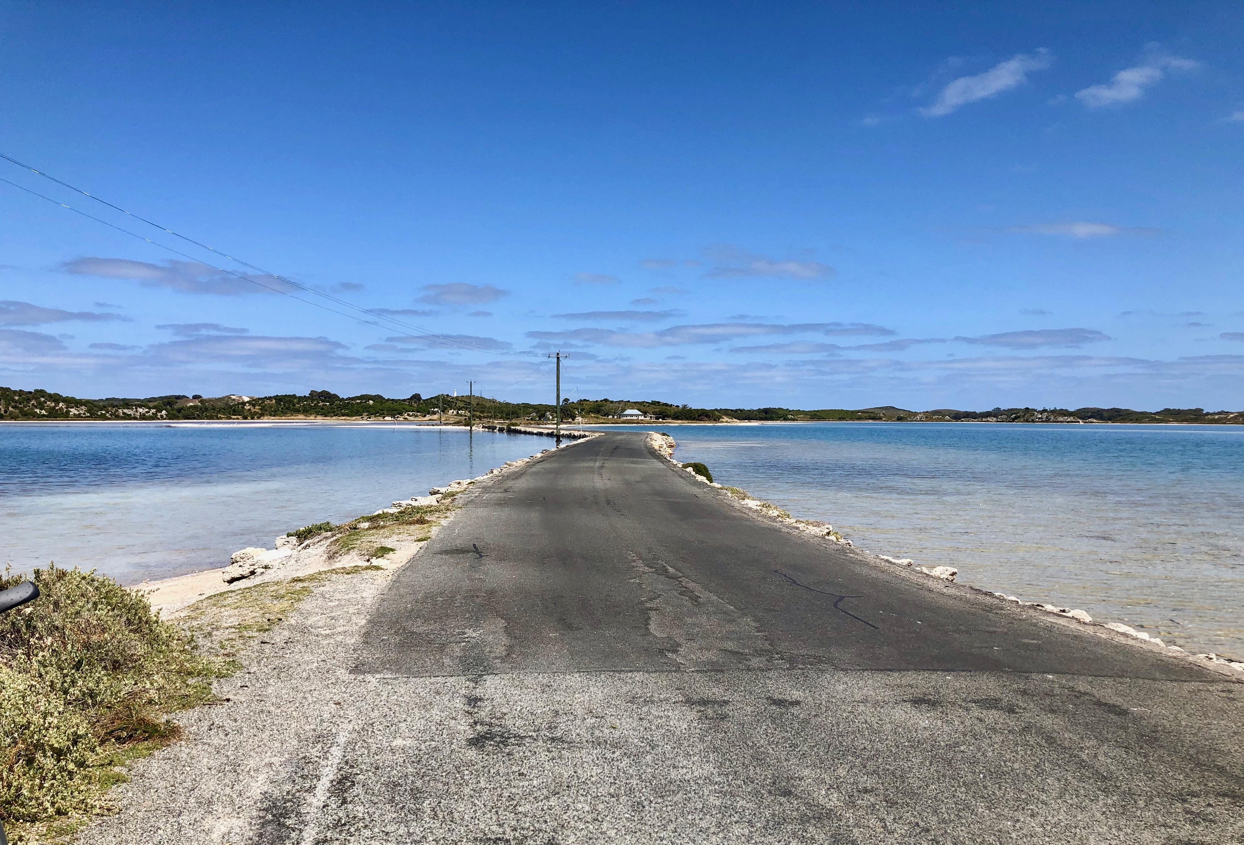 オーストラリア,パース,ロットネスト島,クオッカ,フェリー,行き方,一人旅,バックパッカー,女性,サイクリング,電動自転車