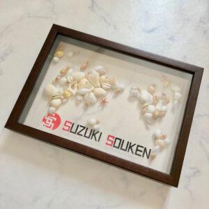 フレーム,ボックス,透明,アクリル,立体,3次元,貝殻,世界地図,ロゴ